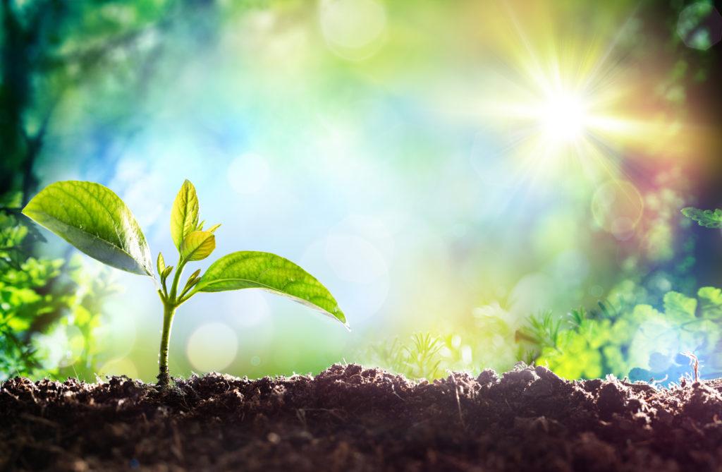 5.将来が不安でしかない人は、環境を変えて、今を生きよう。